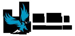 Falcon Online Services